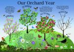 Image: Community Orchard